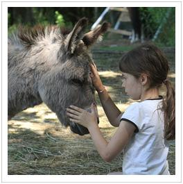 girl petting donkey